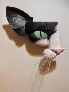 Blk& Wht Cat1