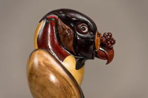 King Vulture 3