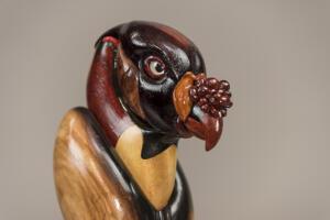King Vulture 4