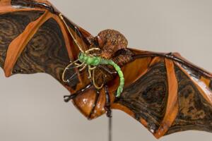 Painted Bat 6