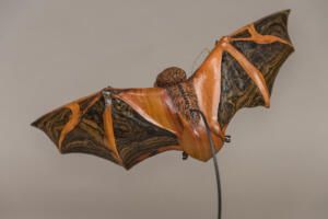 Painted Bat (Back view)