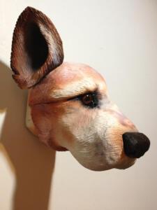 Yumis dog 2